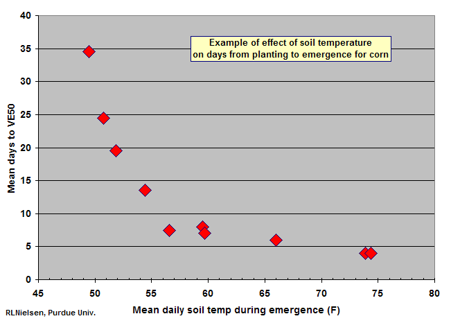 Requirements For Uniform Germination And Emergence Of Corn Corny News Network Purdue University