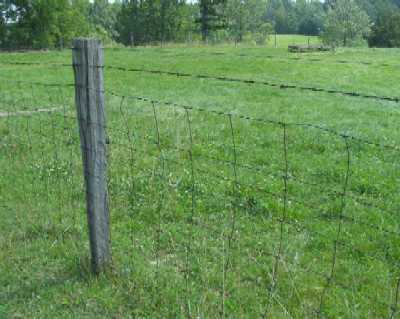 Woven Wire Fence Prices - Home  Garden - Compare Prices, Reviews